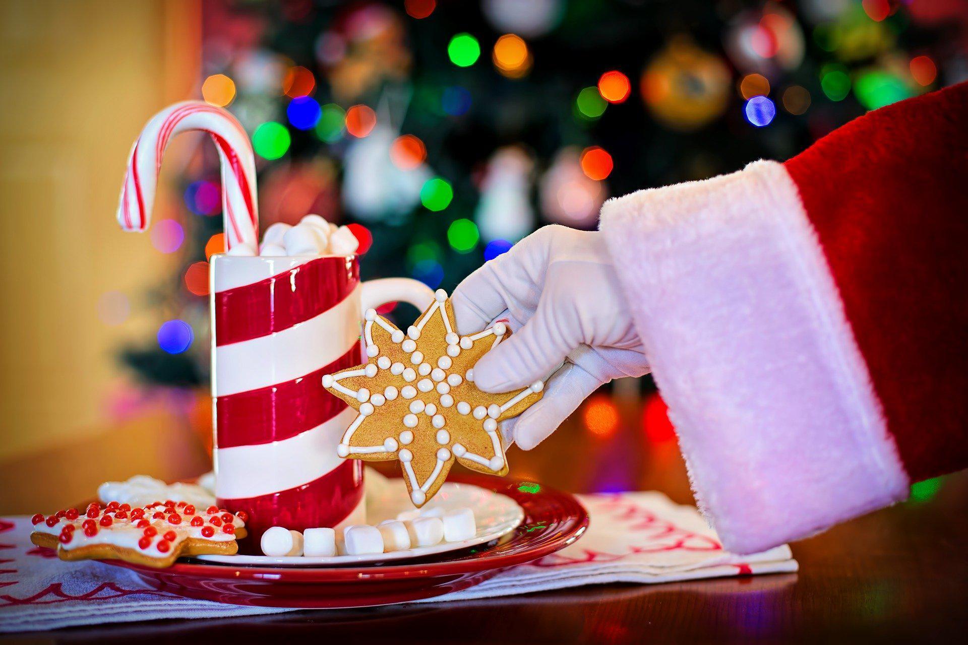 Zdrowych , spokojnych Świąt Bożego Narodzenia !!!