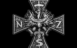 krzyż żołnierzy niezłomnych